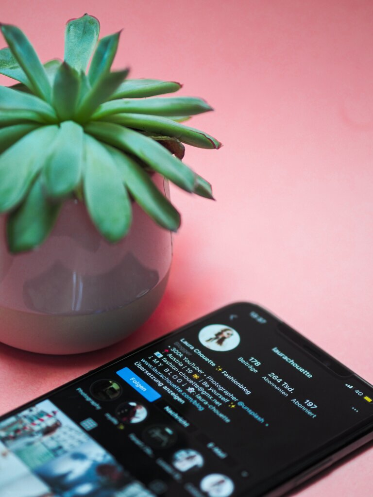 Phone with Instagram open on a pink table with a succulent