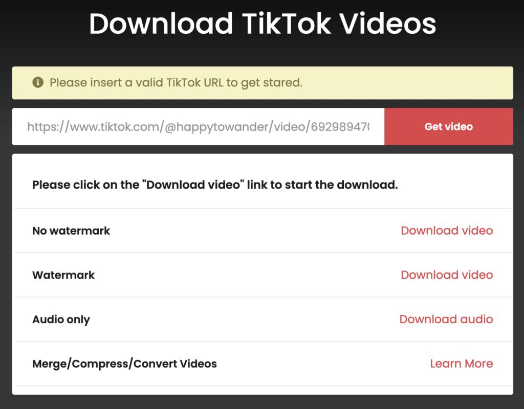 Screenshot from TTDownloader TikTok video downloader